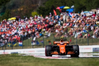 Fotos Stoffel Vandoorne F1 2017 Foto 89
