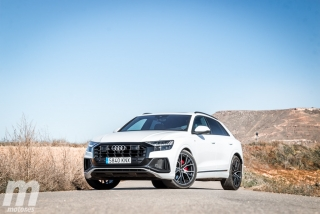 Galería Audi Q8 50 TDI Foto 52