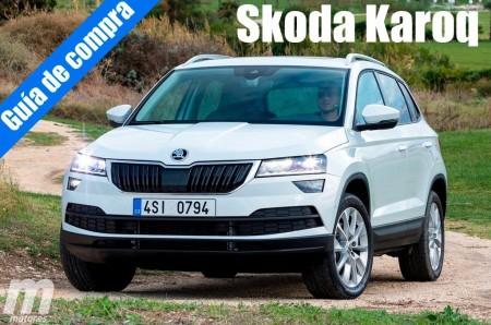 Guía de compra: Skoda Karoq