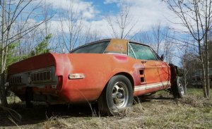 Descubierto uno de los Mustang más caros de la historia abandonado en un campo